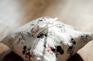 Coussin d'alliances Disney